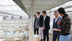 İzmir Tarımının Gelişmesi İçin İşbirlikleri Yapılacak