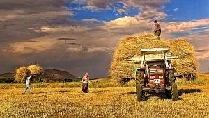 Tarım ve Hayvancılık Yatırımlarına Büyük Destek