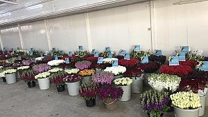 """İZTO'dan Sağlık Çalışanlarına """"Çiçek"""" Morali"""