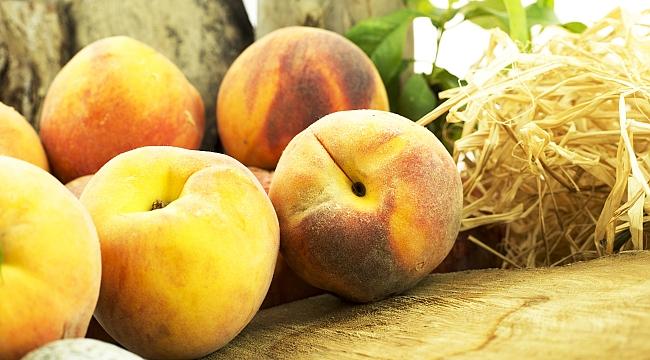 Taze Meyve ve Sebze İhracatında Rekor