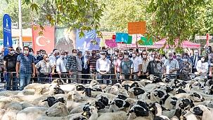 İzmir'de Hayvancılığın Gelişimine Katkı