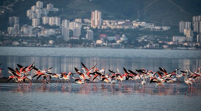 Alt Yapı Sorunlarıyla Boğuşan İzmir'de Yeşil Eylem Planı Hazırlandı