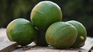Pandemide avokadoya talep patladı